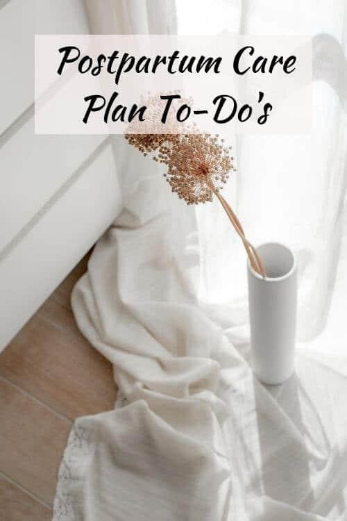postpartum care plan